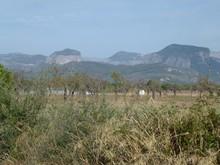 Terreno en Binissalem